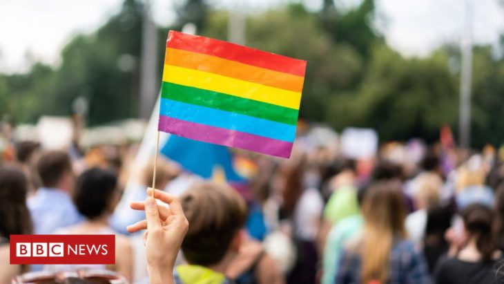 No single gene associated with being gay