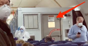 14 Americans tested positive for the coronavirus as they were being evacuated from a Japanese cruise ship, and had to fly home in an 'isolation box' at the back of the plane