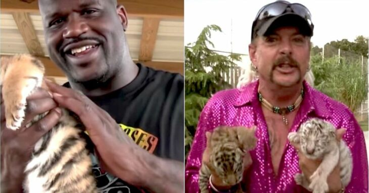 Shaquille O'Neal Explains That Controversial 'Tiger King' Cameo