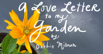An Illustrated Love Letter to Gardening
