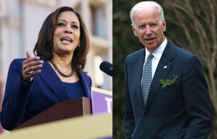 Former gay Trump advisor is furious Joe Biden didn't select a queer running mate – all the while missing the glaringly obvious